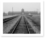 Research Papers on the Holocaust: How to Collect Exclusive Information