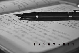 Example Criminology Essay