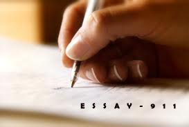 Essay Samples  Critical Essay