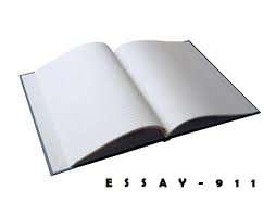 What is an Essay Form?
