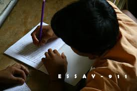 Example of Essay Writing to Help You Complete your Assignment